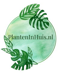 PlantenInHuis logo1