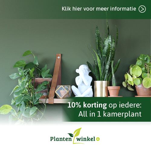 PlantenwinkelNL korting
