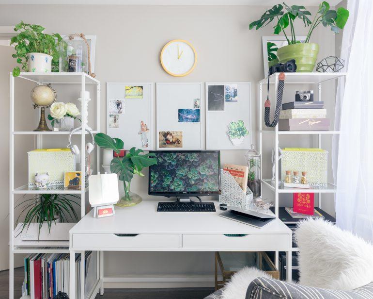 Thuis kantoor planten welke kamerplanten thuiswerken
